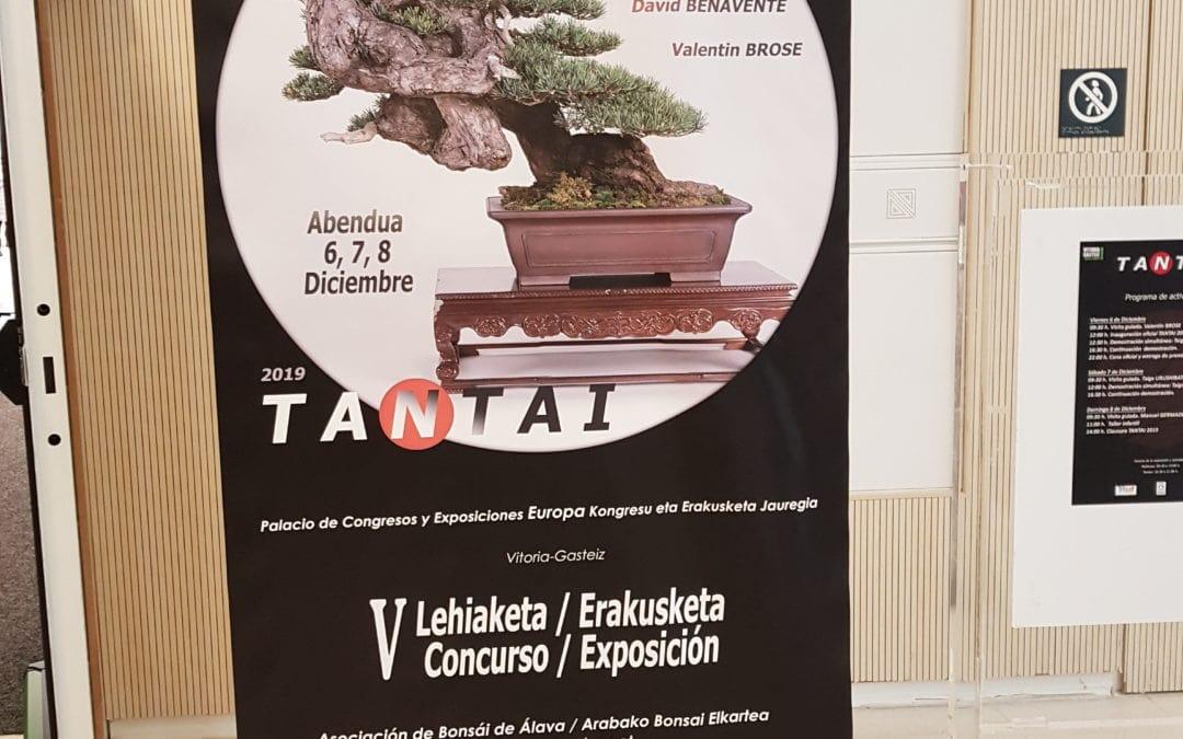 Victoria Gasteiz TANTAI 2020