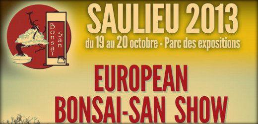 Saulieu 2013